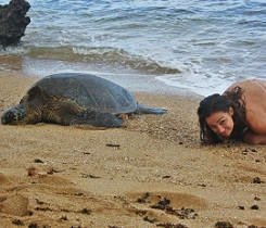 Being turtle
