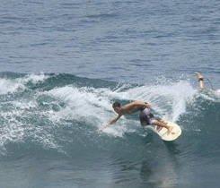 Gabri Surfing