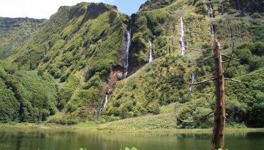 Die grünen Azoren