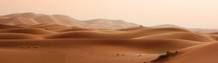 Gentle Dunes in the Desert