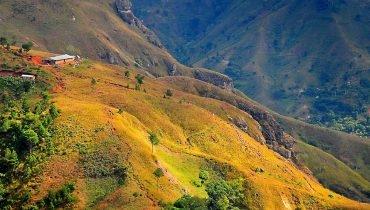 Diverse Landscape
