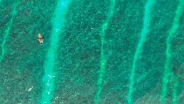 Surfcamps Mittelamerika