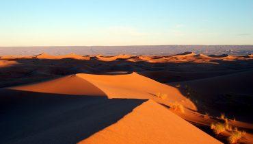 Maximum Drought in the Sahara