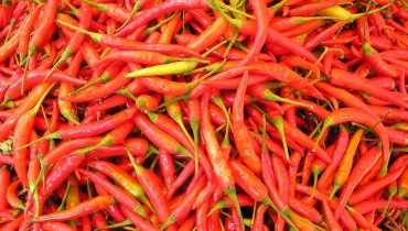 Lombok Chilli Peppers