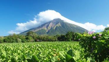Green Nicaragua