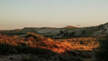 Sanddünen in Le Pin Sec